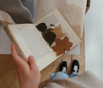 książki z liśćmi w środku